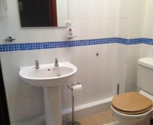 Family Room Ensuite Shower Room